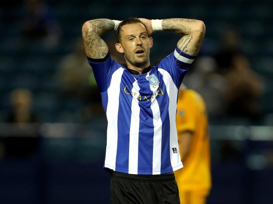 Steven Fletcher likely to miss out again for Sheffield Wednesday