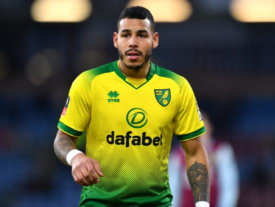 Norwich City vs Leicester City - Onel Hernandez injury blow for Norwich
