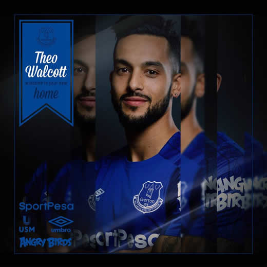 Theo Walcott completes £20 million move from Arsenal to Everton
